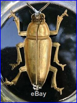 Large Antique Victorian Grasshopper Beetle Bug Brooch Pin 9ct Yellow Gold