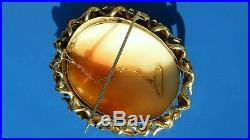 STUNNING ANTIQUE Victorian VERY RARE Large Natural Shell CAMEO ACORN GOLD Brooch