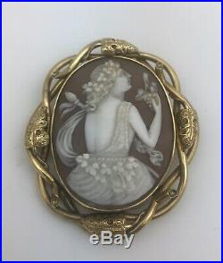 Superb Large Victorian 9ct Gold Carved Shell Cameo Brooch In Original Box